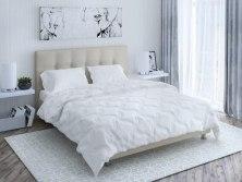 Одеяло Промтекс - Ориент Swon mik ( зимнее )